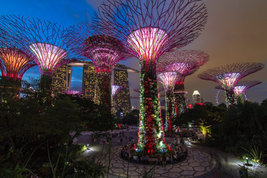 wdrażanie sztucznej inteligencji powinno być jak te ogrody w Singapurze