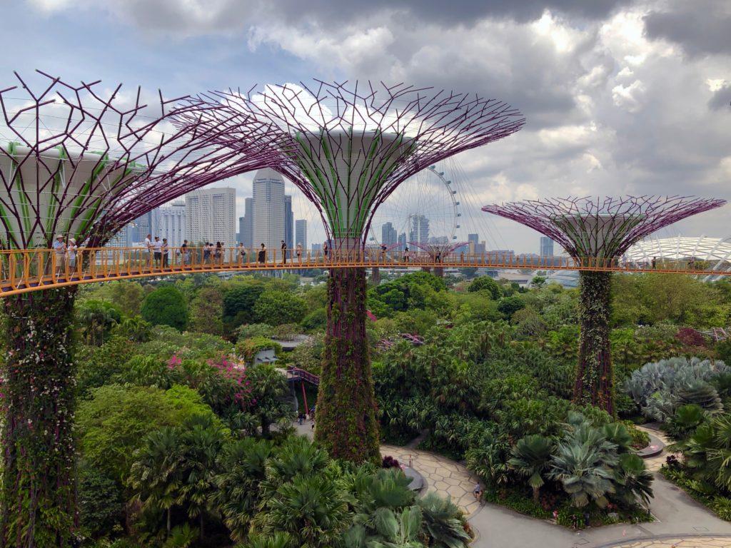 Singapurskie Ogrody nad Zatoką już pachną przyszłością