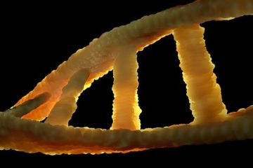łańcuch DNA czyli komplet informacji o nas