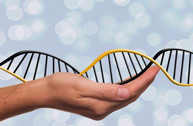 ochrona danych genetycznych :prawda czy fikcja?