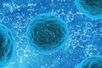 wykrywanie raka przez AI czy to możliwe