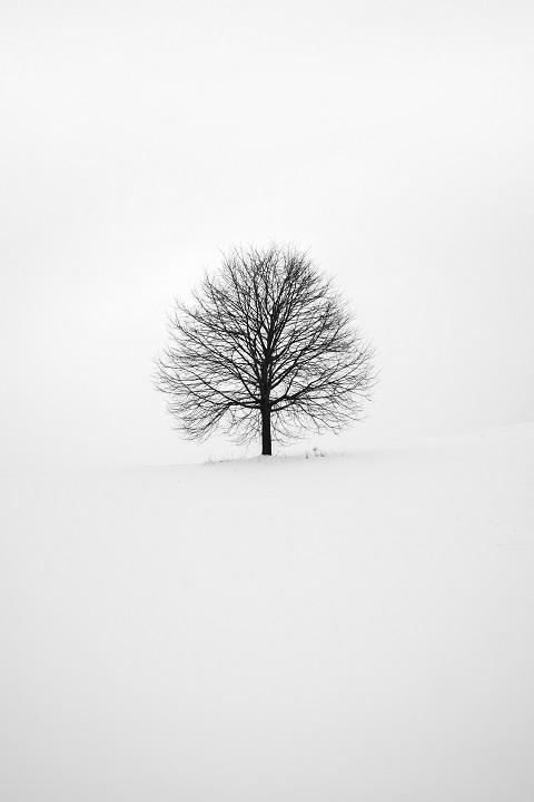 Prostota zimy. Może  Bóg jest minimalistą?